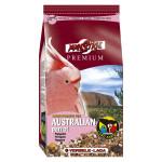 Perroquets Australiens Prenium