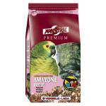 Perroquets Amazones Prenium