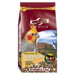 Perruches Australiennes Prenium