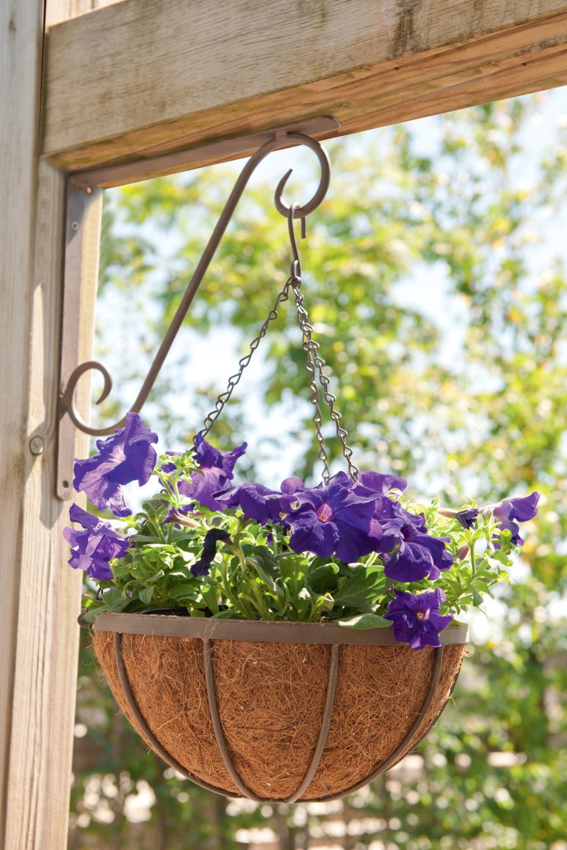 crochet pour suspension hook 2 jardi aisne animalerie jardinerie p pini re d coration. Black Bedroom Furniture Sets. Home Design Ideas